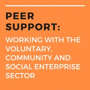 Peer Support working with the VCSE sector (1)
